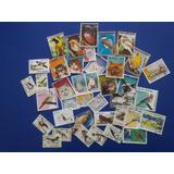 Coleccion De 39 Estampillas De Aves Y Gatos