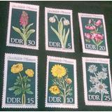 Bella Serie De Estampillas Flores Protegidas Alemania 1968
