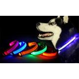 Collar Con Luz Led Para Mascotas