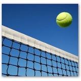 Red De Tenis Aurik Importada