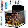 Acuario Marino Reef Blenny 80 Litros