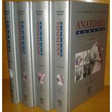 Anatomía Humana De Rouviere 11ava Edición En Oferta