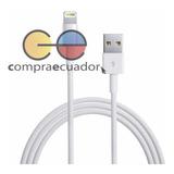 Apple Cable Para iPhone iPad Lightning Usb 2 Metros Original
