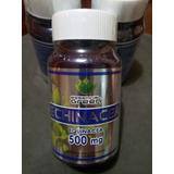 Echinacea, Estimula El Sistema Inmunologico.