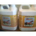 Shampoo Equino Gran Derby 3.8 Litros (galon)
